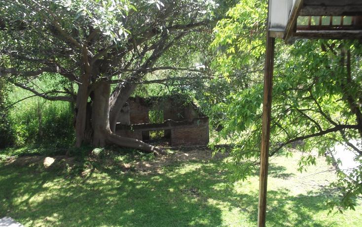 Foto de terreno habitacional en renta en  , tequesquitengo, jojutla, morelos, 1115725 No. 26