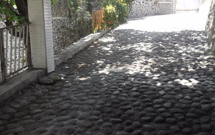 Foto de terreno habitacional en renta en  , tequesquitengo, jojutla, morelos, 1115725 No. 32