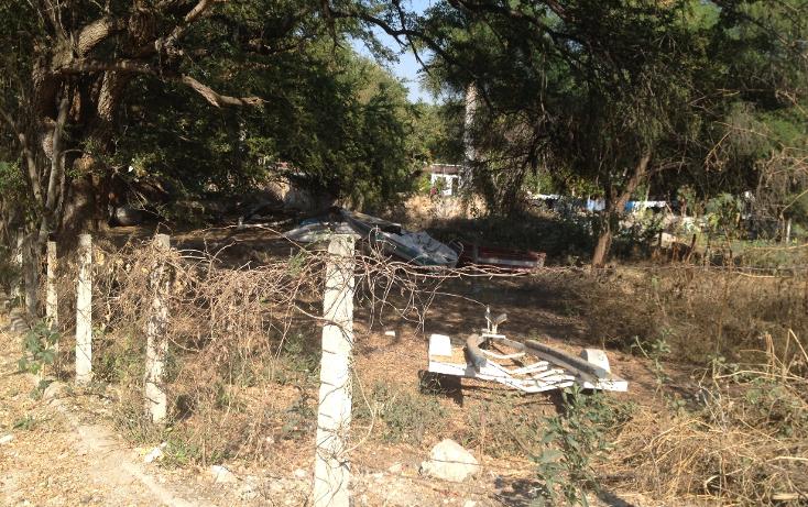 Foto de terreno habitacional en venta en  , tequesquitengo, jojutla, morelos, 1679438 No. 03