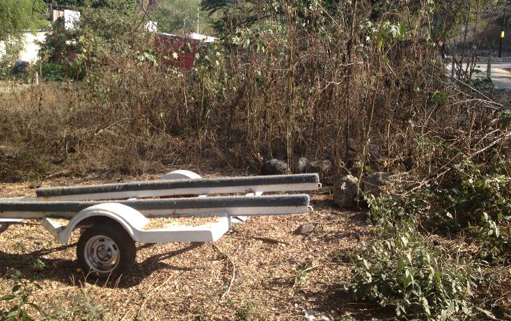 Foto de terreno habitacional en venta en  , tequesquitengo, jojutla, morelos, 1679438 No. 05