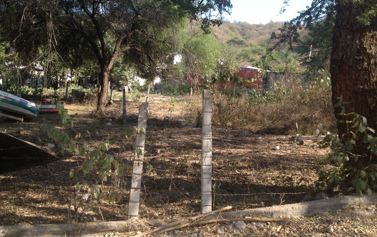 Foto de terreno habitacional en venta en  , tequesquitengo, jojutla, morelos, 1679438 No. 07