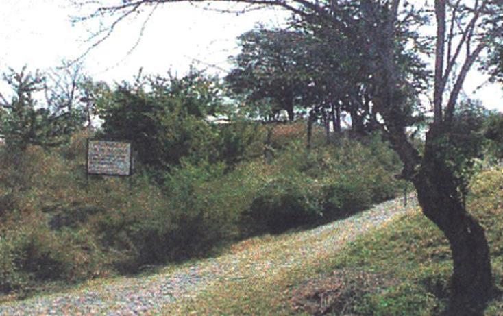 Foto de terreno habitacional en venta en  , tequesquitengo, jojutla, morelos, 2020373 No. 03