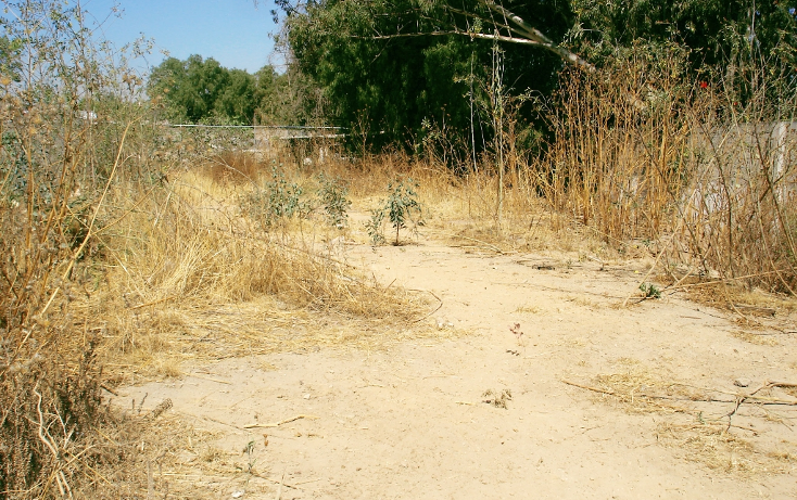 Foto de terreno habitacional en venta en  , tequisistlan, tezoyuca, méxico, 1059147 No. 01