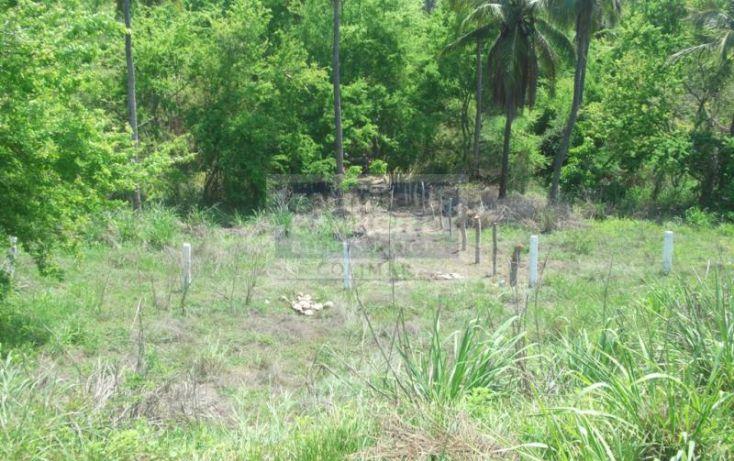 Foto de terreno habitacional en venta en terreno canoa verde autopista manzanillo armeria, armería centro, armería, colima, 1651951 no 03