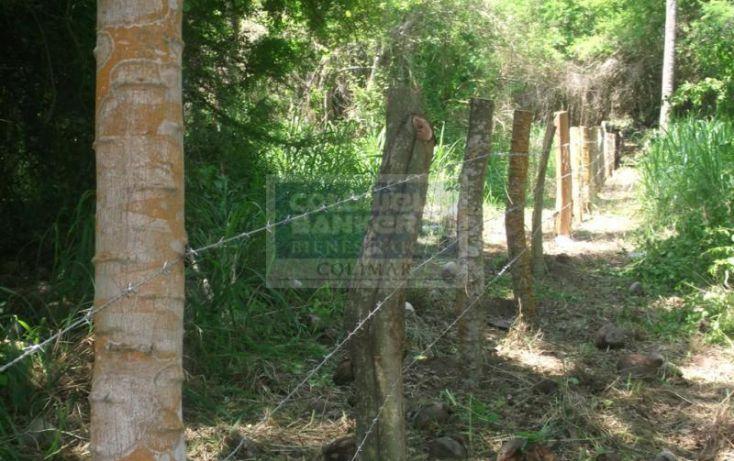 Foto de terreno habitacional en venta en terreno canoa verde autopista manzanillo armeria, armería centro, armería, colima, 1651951 no 06
