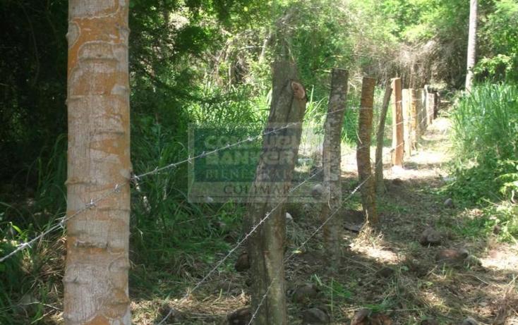 Foto de terreno habitacional en venta en  , armería centro, armería, colima, 1651951 No. 06