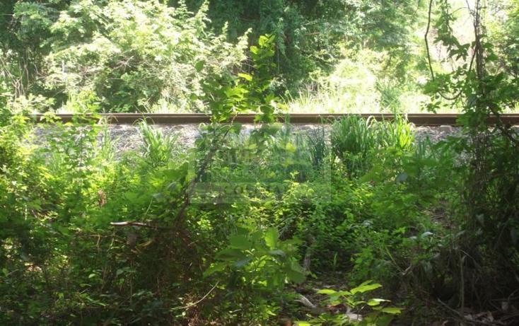 Foto de terreno habitacional en venta en  , armería centro, armería, colima, 1651951 No. 08