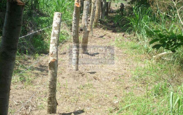 Foto de terreno habitacional en venta en terreno canoa verde autopista manzanillo armeria, armería centro, armería, colima, 1651951 no 09