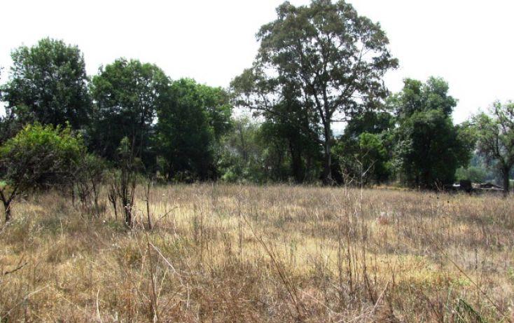 Foto de terreno habitacional en venta en terreno denominado miltenco, la purificación tepetitla, texcoco, estado de méxico, 1705182 no 08