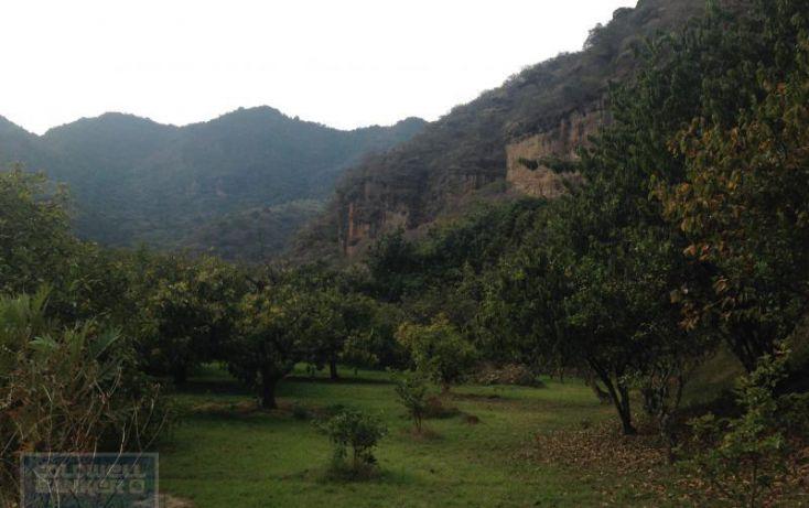 Foto de terreno habitacional en venta en terreno el arenal, san juan, malinalco, estado de méxico, 1868802 no 04