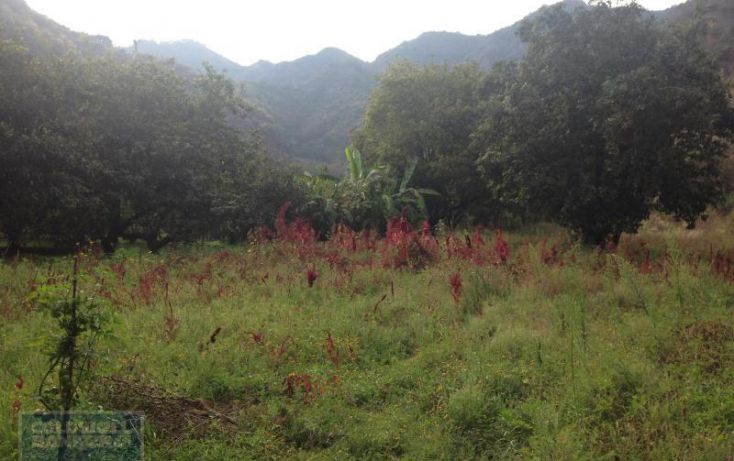 Foto de terreno habitacional en venta en terreno el arenal, san juan, malinalco, estado de méxico, 1868802 no 06