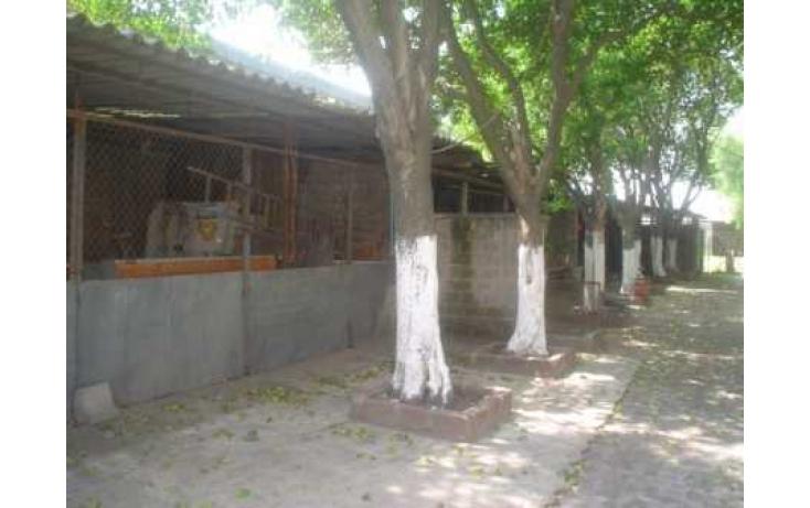 Foto de terreno habitacional con id 87077 en renta en gral mariano escobedo independencia no 03