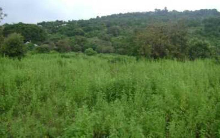 Foto de terreno habitacional con id 86895 en venta en antiguo camino tepoztlánoacalco santiago tepetlapa no 01