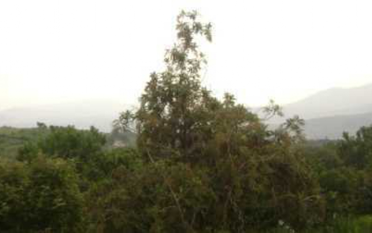 Foto de terreno habitacional con id 86895 en venta en antiguo camino tepoztlánoacalco santiago tepetlapa no 03