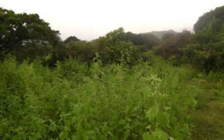 Foto de terreno habitacional con id 86895 en venta en antiguo camino tepoztlánoacalco santiago tepetlapa no 08