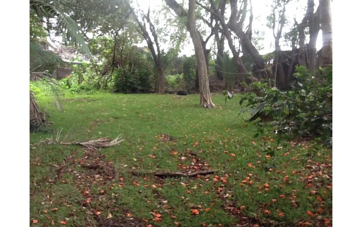 Foto de terreno habitacional con id 235165 en venta en atlacomulco acapatzingo no 05