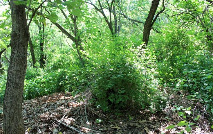 Foto de terreno habitacional con id 317278 en venta en bosques de chapultepec 46 las cañadas no 01