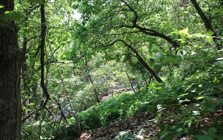 Foto de terreno habitacional con id 317278 en venta en bosques de chapultepec 46 las cañadas no 03