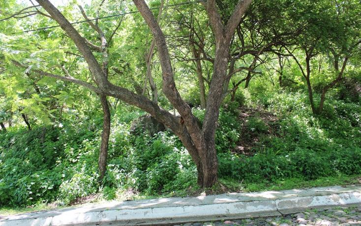 Foto de terreno habitacional con id 317278 en venta en bosques de chapultepec 46 las cañadas no 04