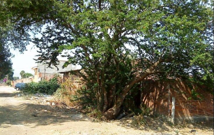 Foto de terreno habitacional con id 388297 en venta en callejón de las gallinas juan gutiérrez flores ii no 06