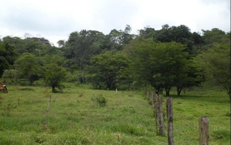 Foto de terreno habitacional con id 398874 en venta en camino a rancho viejo mahuixtlan no 02