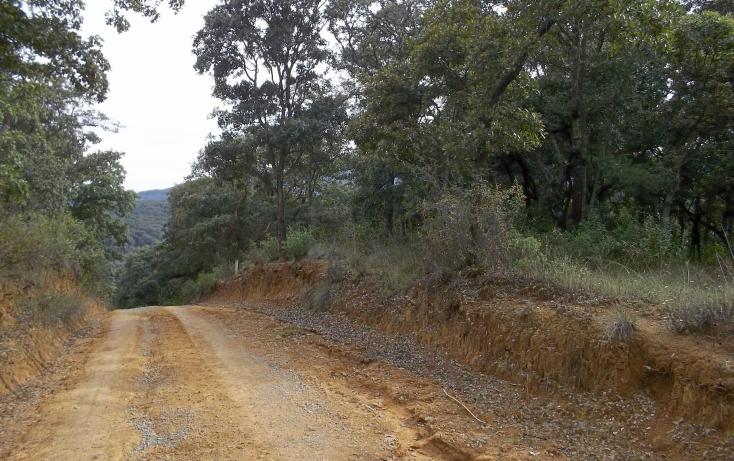 Foto de terreno habitacional con id 338040 en venta en camino al centro ceremonial o pueblo viejo no 08