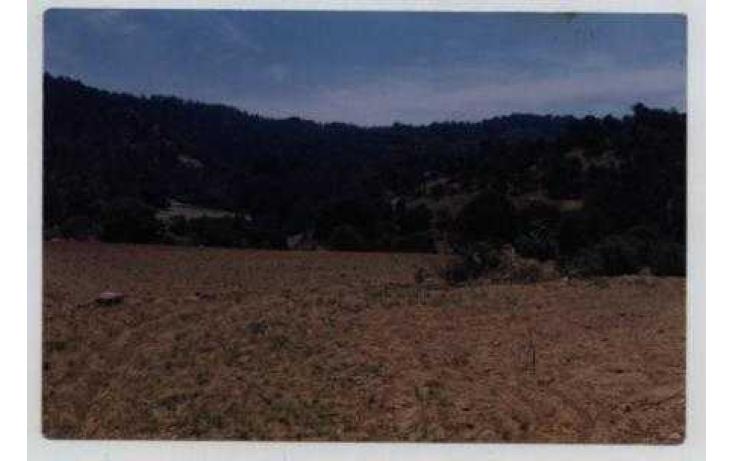 Foto de terreno habitacional con id 328578 en venta en camino gapacho salazar no 01