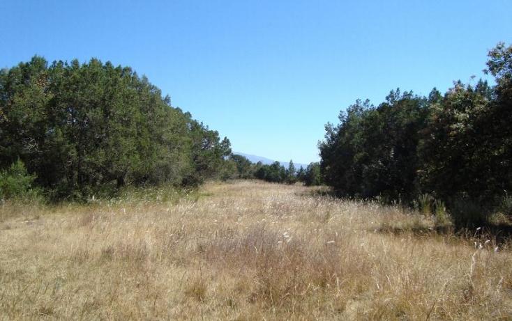 Foto de terreno habitacional con id 397253 en venta en camino real a san francisco san francisco tlacuilohcan no 01