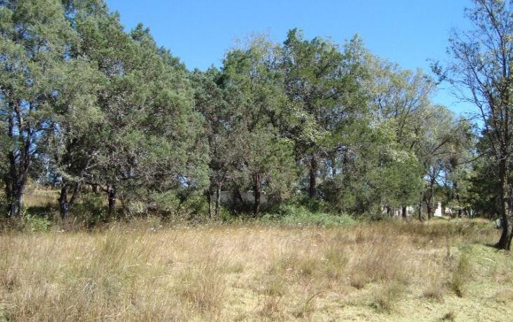 Foto de terreno habitacional con id 397253 en venta en camino real a san francisco san francisco tlacuilohcan no 03