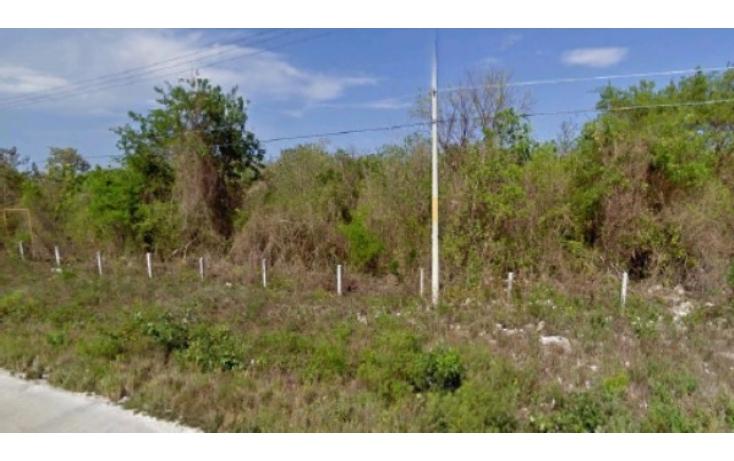 Foto de terreno habitacional con id 328603 en venta en carretera cancúnchetumal cancún centro no 02