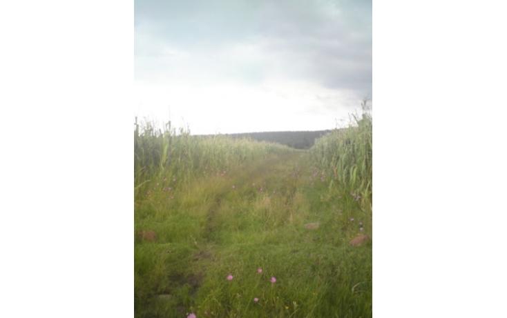 Foto de terreno habitacional con id 94883 en venta en carretera jilotepecchapa de mota jilotepec de molina enríquez no 03