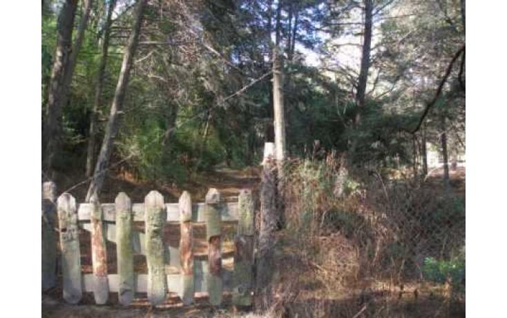 Foto de terreno habitacional con id 86847 en venta en carretera jilotzingo  tlazala santa ana jilotzingo no 02