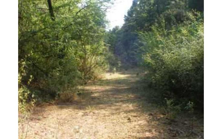 Foto de terreno habitacional con id 86847 en venta en carretera jilotzingo  tlazala santa ana jilotzingo no 05