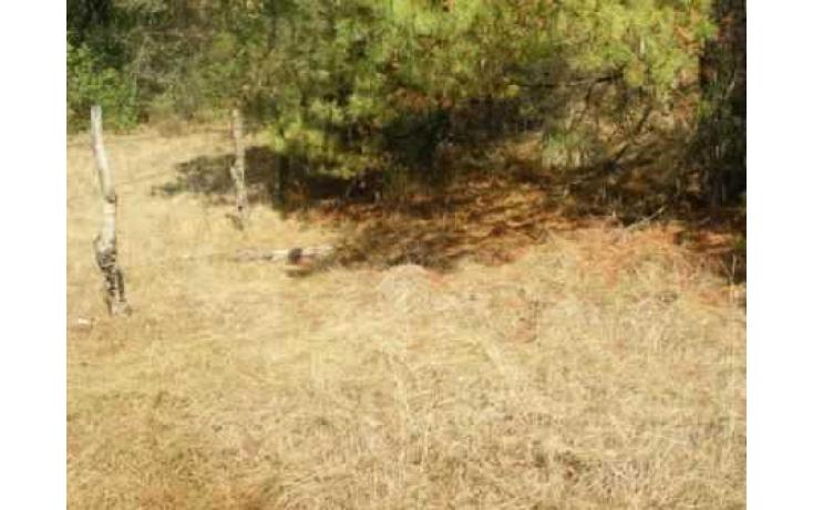 Foto de terreno habitacional con id 86847 en venta en carretera jilotzingo  tlazala santa ana jilotzingo no 09