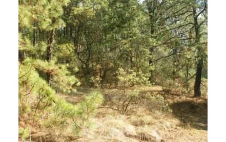 Foto de terreno habitacional con id 86847 en venta en carretera jilotzingo  tlazala santa ana jilotzingo no 10
