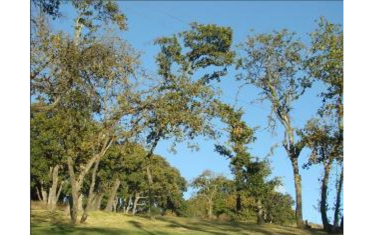 Foto de terreno habitacional con id 427613 en venta en eucaliptos campestre haras no 01