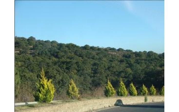 Foto de terreno habitacional con id 427613 en venta en eucaliptos campestre haras no 03