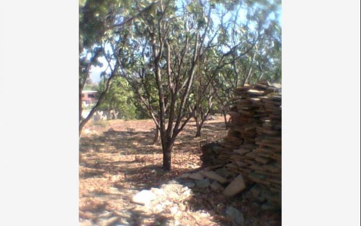 Foto de terreno habitacional con id 397508 en venta en impecsa guadalupe no 01