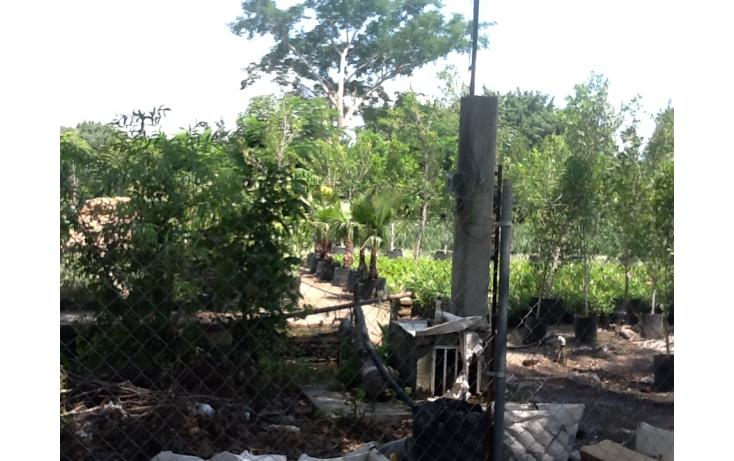 Foto de terreno habitacional con id 236768 en venta en independencia eusebio jauregui no 01