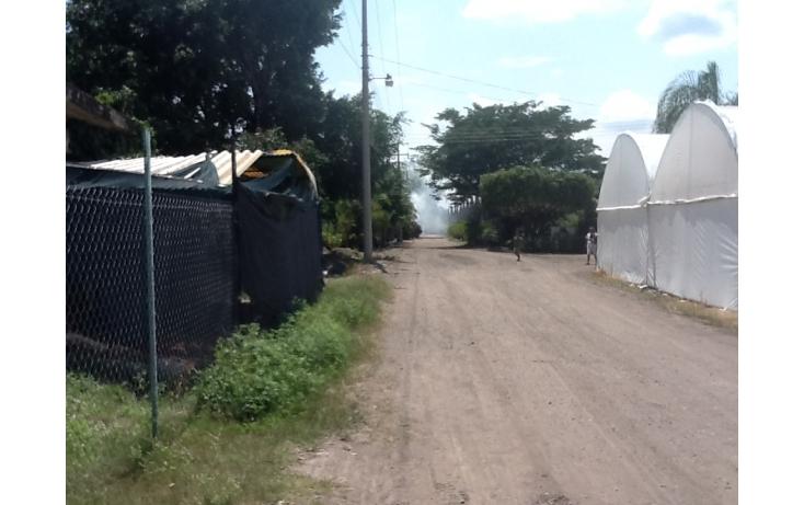 Foto de terreno habitacional con id 236768 en venta en independencia eusebio jauregui no 02