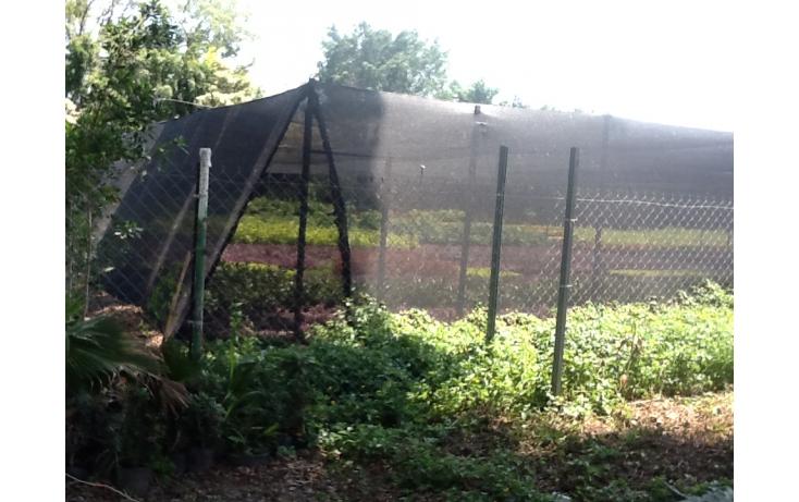 Foto de terreno habitacional con id 236768 en venta en independencia eusebio jauregui no 04