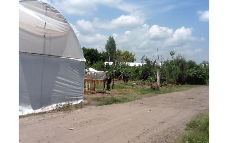 Foto de terreno habitacional con id 236768 en venta en independencia eusebio jauregui no 07