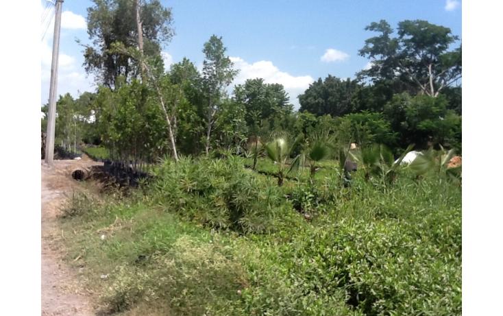Foto de terreno habitacional con id 236768 en venta en independencia eusebio jauregui no 09