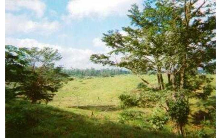 Foto de terreno habitacional con id 135018 en venta en j mario rosado morales chicuapilla no 03