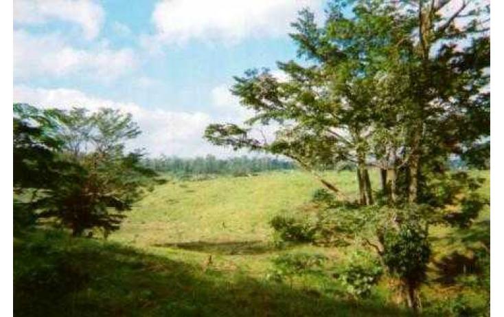 Foto de terreno habitacional con id 135018 en venta en j mario rosado morales chicuapilla no 06