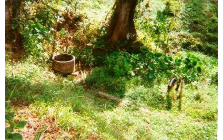 Foto de terreno habitacional con id 135018 en venta en j mario rosado morales chicuapilla no 07