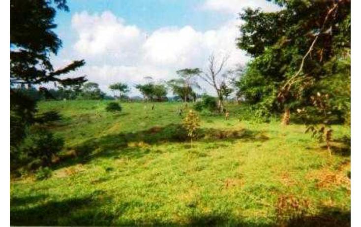 Foto de terreno habitacional con id 135018 en venta en j mario rosado morales chicuapilla no 08