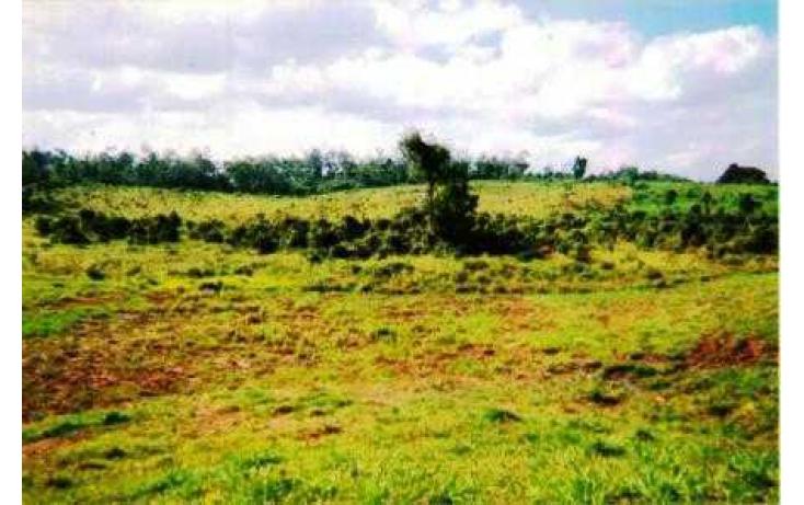 Foto de terreno habitacional con id 135018 en venta en j mario rosado morales chicuapilla no 09