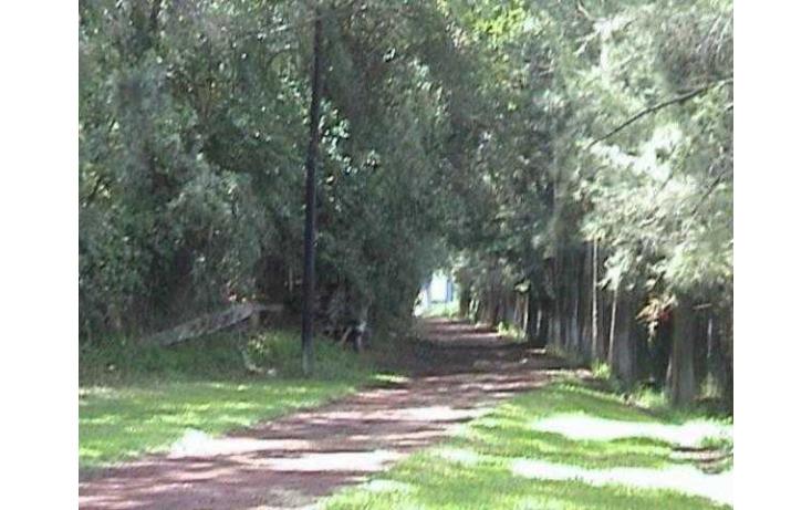 Foto de terreno habitacional con id 86969 en venta en km 28 carretera texcoco  veracrúz san joaquín coapango no 08