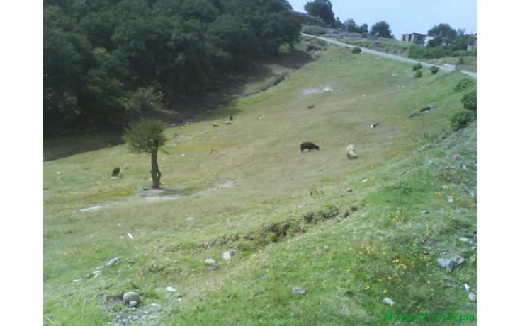 Foto de terreno habitacional con id 335596 en venta en las moras anáhuac no 02